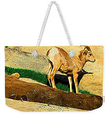 Baby Desert Bighorn In Abstract Weekender Tote Bag