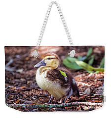 Baby Duck Sitting Weekender Tote Bag by Stephanie Hayes