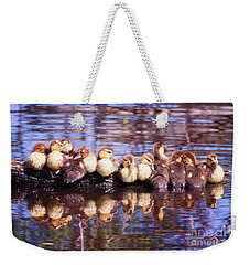 Baby Ducks On A Log Weekender Tote Bag