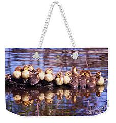 Baby Ducks On A Log Weekender Tote Bag by Stephanie Hayes