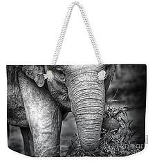 Baby Elephant 1 Weekender Tote Bag