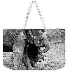 Baby Elephant Security Weekender Tote Bag by Wes and Dotty Weber