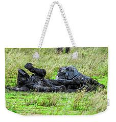 Baby Elephants Playing In The Mud Weekender Tote Bag