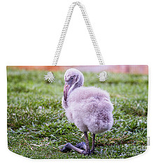 Baby Flamingo Sitting Weekender Tote Bag