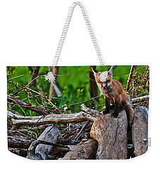 Baby Fox Weekender Tote Bag