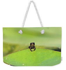 Baby Frog On Lily Pad 8967 Weekender Tote Bag