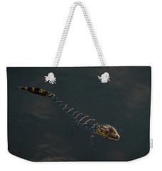 Baby Gator 2 Delray Beach, Florida Weekender Tote Bag