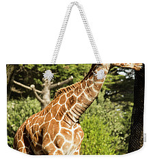 Baby Giraffe 2 Weekender Tote Bag by Suzanne Luft