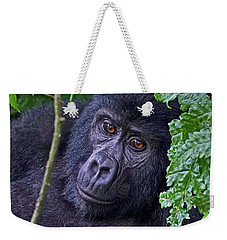 Baby Gorilla Weekender Tote Bag by Michael Cinnamond