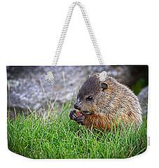 Baby Groundhog Eating Weekender Tote Bag by Bob Orsillo