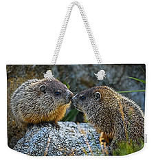 Baby Groundhogs Kissing Weekender Tote Bag by Bob Orsillo