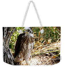 Baby Hawk Fell Out Of Nest Weekender Tote Bag