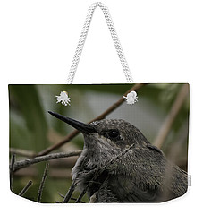 Baby Humming Bird Weekender Tote Bag