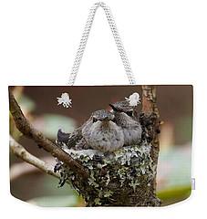 Baby Hummingbirds In Nest Weekender Tote Bag