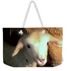 Baby Lamb Weekender Tote Bag
