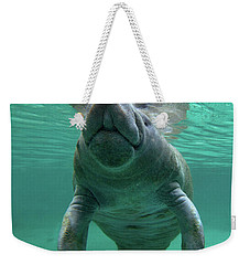 Baby Manatee Weekender Tote Bag by Tim Fitzharris