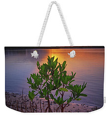 Baby Mangrove Sunset At Indian River State Park Weekender Tote Bag
