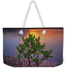 Weekender Tote Bag featuring the photograph Baby Mangrove Sunset At Indian River State Park by Justin Kelefas