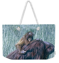 Weekender Tote Bag featuring the photograph Baby by Melissa Messick