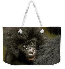 Baby Mountain Gorilla  Weekender Tote Bag by Ingo Arndt