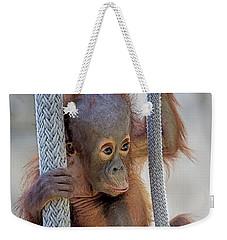 Baby Orang Weekender Tote Bag