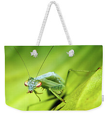 Baby Praymantes 6677 Weekender Tote Bag by Kevin Chippindall