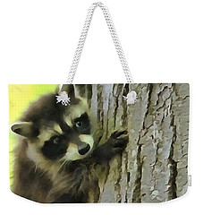 Baby Raccoon In A Tree Weekender Tote Bag by Dan Sproul