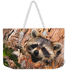 Baby Raccoon Weekender Tote Bag by William Jobes