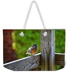 Baby Robin  Weekender Tote Bag