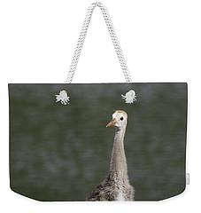 Baby Sandhill Crane Weekender Tote Bag