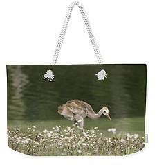 Baby Sandhill Crane Walking Through Wildflowers Weekender Tote Bag