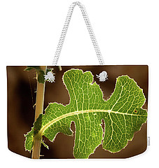 Back Side Light On A Leaf At Sunset Weekender Tote Bag by Yoel Koskas