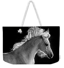 Backlit Arabian Weekender Tote Bag by Wes and Dotty Weber