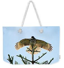 Backlit Landing Hawk Weekender Tote Bag