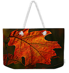 Backlit Leaf Weekender Tote Bag