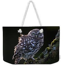 Backlit Little Owl Weekender Tote Bag