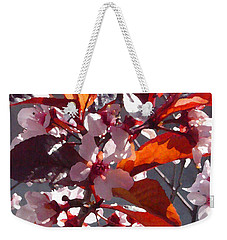 Backlit Pink Tree Blossoms Weekender Tote Bag