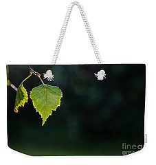 Weekender Tote Bag featuring the photograph Backlit Shiny Leaf by Kennerth and Birgitta Kullman