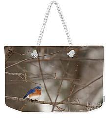 Backyard Blue Weekender Tote Bag