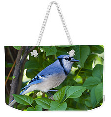 Backyard Visitor Weekender Tote Bag