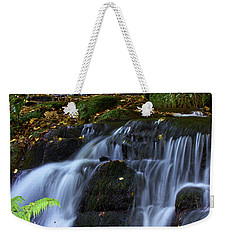 Weekender Tote Bag featuring the photograph Badger Fall by Baggieoldboy