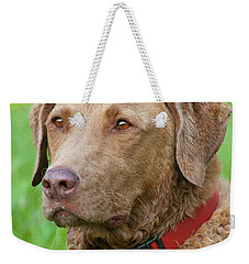 Weekender Tote Bag featuring the photograph Bailee 1149 by Guy Whiteley