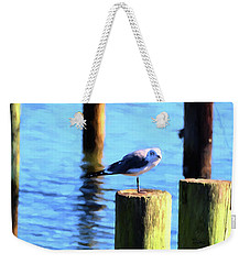 Weekender Tote Bag featuring the photograph Balanced by Jan Amiss Photography