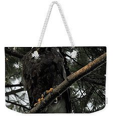 Weekender Tote Bag featuring the photograph Bald Eagle by Glenn Gordon