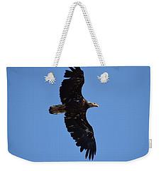 Bald Eagle Juvenile Soaring Weekender Tote Bag