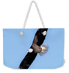 Bald Eagle Overhead  Weekender Tote Bag by Ricky L Jones