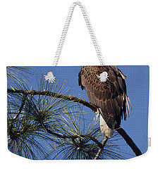 Weekender Tote Bag featuring the photograph Bald Eagle by Sally Weigand