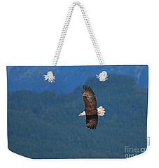 Weekender Tote Bag featuring the photograph Bald Eagle Soaring  by Sharon Talson