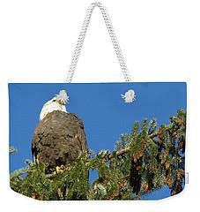 Bald Eagle Sunbathing Weekender Tote Bag