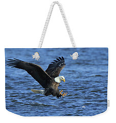 Weekender Tote Bag featuring the photograph Bald Eagle Talons Up by Coby Cooper